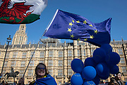 Anti Brexit protesters in Westminster as the Prime Minister arrives in Brussels to request an extension to Article 50 so the UK can continue to try to agree a Brexit Withdrawal Agreement on 10th April 2019 in London, England, United Kingdom. With just two days until the UK is supposed to be leaving the European Union, the delay decision awaits.