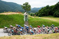 Peloton in Kozjansko during 1st Stage of 26th Tour of Slovenia 2019 cycling race between Ljubljana and Rogaska Slatina (171 km), on June 19, 2019 in  Slovenia. Photo by Vid Ponikvar / Sportida