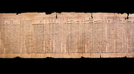"""Ancient Egyptian Book of the Dead papyrus - Spell 33 for keeping snakes away, Iufankh's Book of the Dead, Ptolomaic period (332-30BC).Turin Egyptian Museum.  Black background<br /> <br /> the spell reads ' O Rerek! Move not! Behold Geb and Shu have risen against you, for you have eaten a mouse, the abomination of Re"""" you have crunched the bones of a putrified cat""""<br /> <br /> The translation of  Iuefankh's Book of the Dead papyrus by Richard Lepsius marked a truning point in the studies of ancient Egyptian funereal studies. .<br /> <br /> If you prefer to buy from our ALAMY PHOTO LIBRARY  Collection visit : https://www.alamy.com/portfolio/paul-williams-funkystock/ancient-egyptian-art-artefacts.html  . Type -   Turin   - into the LOWER SEARCH WITHIN GALLERY box. Refine search by adding background colour, subject etc<br /> <br /> Visit our ANCIENT WORLD PHOTO COLLECTIONS for more photos to download or buy as wall art prints https://funkystock.photoshelter.com/gallery-collection/Ancient-World-Art-Antiquities-Historic-Sites-Pictures-Images-of/C00006u26yqSkDOM"""