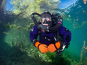 KISS Spirit rebreather diver on the wall with green algae at Dutch Springs, Scuba Diving Resort in Pennsylvania