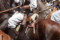 FIESTA NACIONAL DE LA VENDIMIA 2010, CARUSEL EN LAS CALLES DEL CENTRO, CIUDAD DE MENDOZA, PROVINCIA DE MENDOZA, ARGENTINA