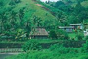 Along Kings Road, North Viti Levu, Fiji<br />