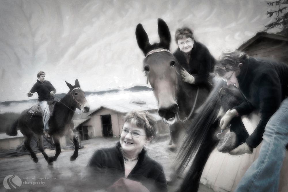 Lynne: Friend to horse and mule alike.