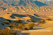 62945-00311 Sand Dunes in Death Valley Natl Park CA