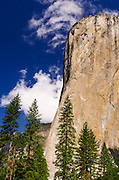 Morning light on El Capitan, Yosemite National Park, California USA