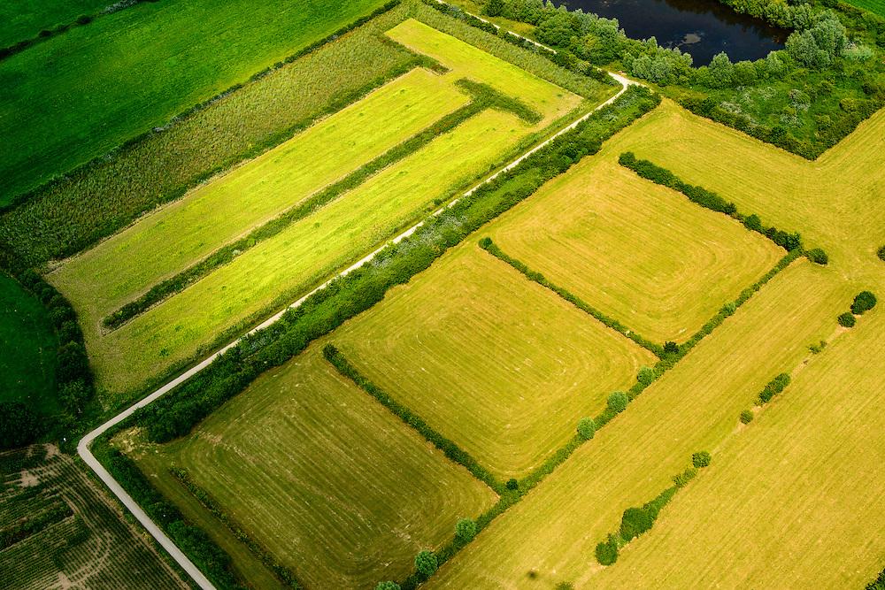 Nederland,Noord-Brabant,  Gemeente Boxmeer, 26-06-2014; Maasheggen in de Oeffelter Meent ten zuiden van Cuijk. <br /> Percelen gescheiden door gevlochten heggen van meidoorn en sleedoorn gelegen in de uiterwaarden van de Maas en in gebruik voor het weiden van vee. Historisch landschap met bijzondere ecologische waard.<br /> Maasheggen near Cuijk. Plots for cattle are seprated by means of twinned or woven hedges of hawthorn and blackthorn. The hedges are located in the floodplain of the Meuse and used for grazing cattle. Historic landscapes with special ecological value<br /> luchtfoto (toeslag op standaard tarieven);<br /> aerial photo (additional fee required);<br /> copyright foto/photo Siebe Swart.