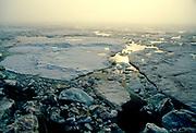 Sea ice, foggy day, dear Geographic North Pole, Siberia Arctic