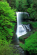 Image of North Middle Falls at Silver Falls State Park, Oregon, Pacific Northwest by Randy Wells