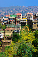 Houses on a hillside, Valparaiso, Chile