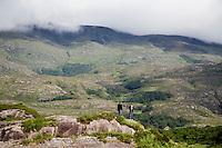 KENMARE (KERRY) - IERLAND , uitzichten op de heuvels vanaf de N71, de weg tussen Kenmare en Killarney. COPYRIGHT KOEN SUYK