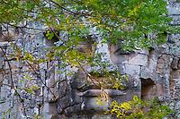 Asie du Sud Est, Cambodge, Province de Siem Reap, Angkor, complexe des temples de Angkor, Patrimoine Mondial de l'UNESCO en 1992, temple de Angkor Thom, porte Ouest// Southeast Asia, Cambodia, Siem Reap Province, Angkor site, Unesco world heritage since 1992, Angkor Thom temple, West entry gate