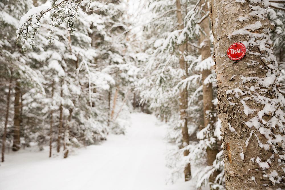 Winter on the Cooper Kiln trail Wilmington NY