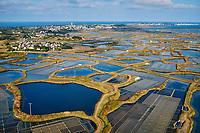 France, Loire-Atlantique (44), Guérande, les marais salants de Guérande // France, Loire-Atlantique, Guérande, Salt marshes of Guerande