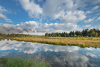 Clouds in evening light reflected in still waters of Snake River at Schwabacher Landing Grand Teton National Park Wyoming