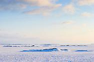 Is på en skärgårdsfjärd vid Sandhamn i Stockholms skärgård