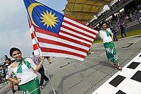 MOTORSPORT - F1 2014 - GRAND PRIX OF MALAYSIA  - SEPANG (MAL) - 28 TO 30/03/2014 - <br /> GRILLE DE DEPART - STARTING GRID
