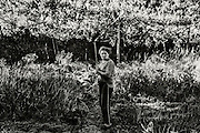 Clara stand in the field where she grows some vegetable.