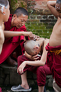 Young monks in a Tibetan monestary at the Swayambhunath temple complex, also called the Monkey Temple. The young boys are having their hair shaved by an older monk.