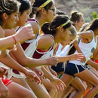 103114  Adron Gardner/Independent<br /> <br /> Division 3 runners, pack together at the start of the Division 3 girls  sectional cross country race in Holbrook Friday.