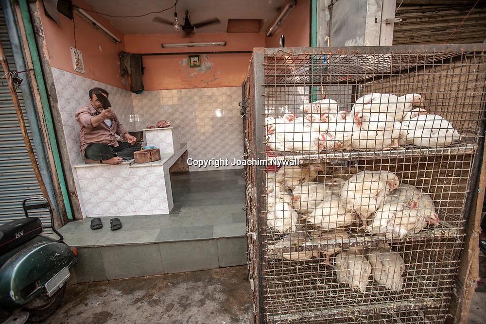 2007 01 29 Delhi India <br /> Paharganj Main Bazar<br /> Lokala matmarknaden <br /> Man som slaktar hönor och kycklingar<br /> ----<br /> FOTO : JOACHIM NYWALL KOD 0708840825_1<br /> COPYRIGHT JOACHIM NYWALL<br /> <br /> ***BETALBILD***<br /> Redovisas till <br /> NYWALL MEDIA AB<br /> Strandgatan 30<br /> 461 31 Trollhättan<br /> Prislista enl BLF , om inget annat avtalas.