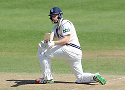 Middlesex's Adam Voges sweeps the ball. - Photo mandatory by-line: Harry Trump/JMP - Mobile: 07966 386802 - 29/04/15 - SPORT - CRICKET - LVCC Division One - County Championship - Somerset v Middlesex - Day 4 - The County Ground, Taunton, England.