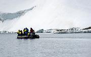 Nature photographers in Antarctica.  Kinnes Cove, Paulet Island.