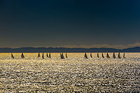 Sailboats, Santa Barbara, California USA.