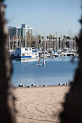 Mother's Beach at the Marina Del Rey Harbor