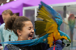 © Licensed to London News Pictures. 07/05/2016. London, UK. A young girl is startled by a parrot. Huge crowds of pet lovers visit The National Pet Show at the Excel centre.  Everything from dogs, cats, small furry animals to reptiles are on show for visitors to meet. Photo credit : Stephen Chung/LNP
