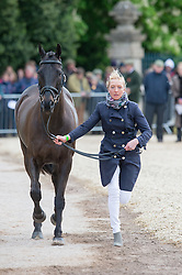 Clark Aoife, (IRL), Vaguely North<br /> First Horse Inspection - Mitsubishi Motors Badminton Horse Trials <br /> Badminton 2015