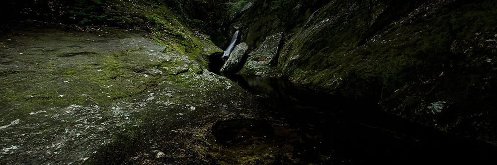 Summertime trip to Welton Falls State Forest in Alexandria, NH.