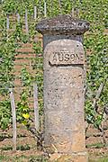 A stone gate pillar carved with Ausone in the vineyard of Chateau Ausone  Saint Emilion  Bordeaux Gironde Aquitaine France