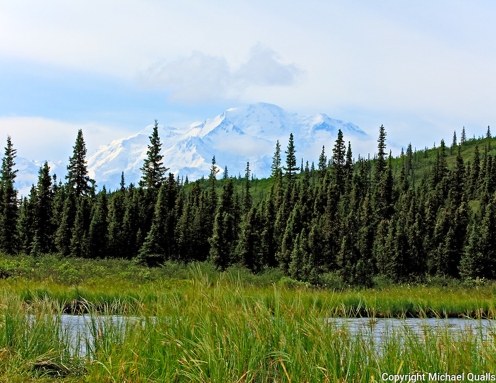 The edge of Wonder Lake with the North Face of Denali in the background.  Denali, NP.  USA