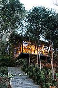 Tree Restaurant