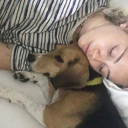 """Miley Cyrus releases a photo on Instagram with the following caption: """"Thankful for @beaglefreedom and their mission to free captive pups from inhumane animal testing labs! Without BFPs work I wouldn't be falling asleep next to Little Dog, being lulled by the sound of her heartbeat .... #whosavedwho #myrescuerescuedme #fucktestingonanimals \u2764\ufe0f\ud83d\udc99\ud83d\udc9a\ud83d\udc9c\ud83d\udc9b @happyhippiefdn"""". Photo Credit: Instagram *** No USA Distribution *** For Editorial Use Only *** Not to be Published in Books or Photo Books ***  Please note: Fees charged by the agency are for the agency's services only, and do not, nor are they intended to, convey to the user any ownership of Copyright or License in the material. The agency does not claim any ownership including but not limited to Copyright or License in the attached material. By publishing this material you expressly agree to indemnify and to hold the agency and its directors, shareholders and employees harmless from any loss, claims, damages, demands, expenses (including legal fees), or any causes of action or allegation against the agency arising out of or connected in any way with publication of the material."""