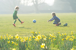 © Licensed to London News Pictures 02/03/2021.        Greenwich, UK. Two young boys playing football near the Daffodils. People enjoy some afternoon sunny weather at Greenwich Park in London. Photo credit:Grant Falvey/LNP