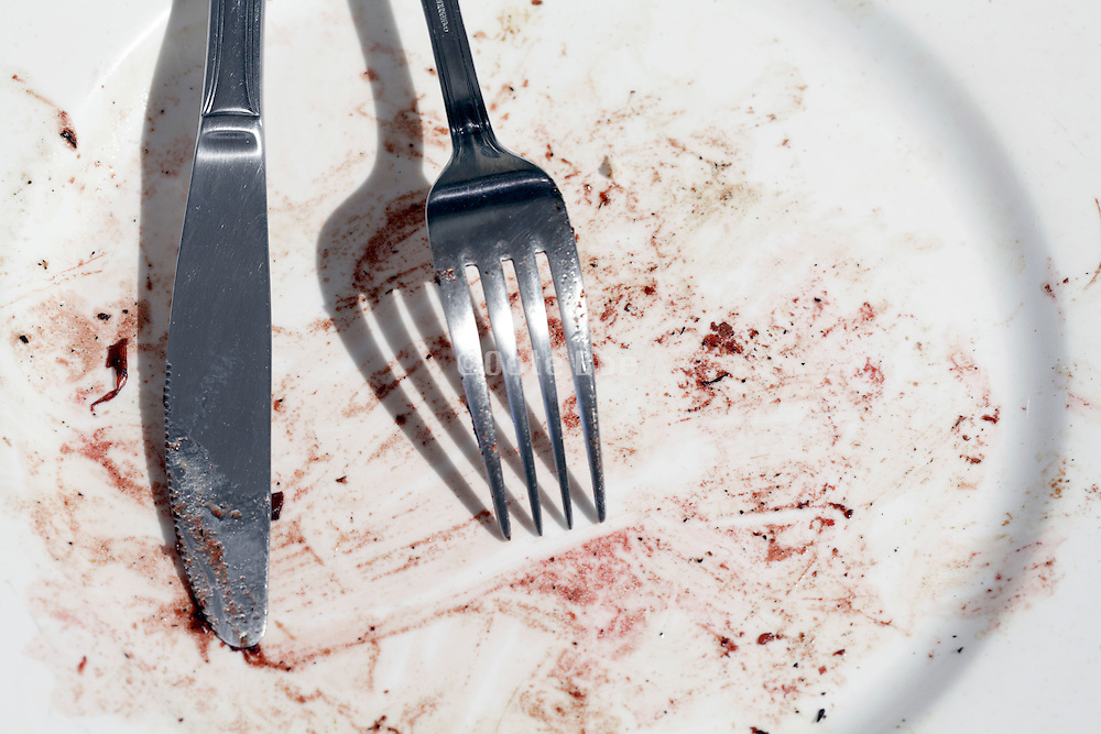 fork and knife on an empty plate