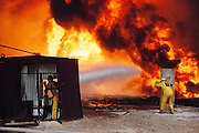 An oil well fire specialist from the Texas company Wild Well Control shields himself from the intense heat of the fire so that he can more closely direct other workers using equipment on the end of long booms attached to shielded bulldozers in the Kuwait oil fields. The company was one of those brought in to fight the Kuwait oil well fires after the end of the Gulf War. More than 700 wells were set ablaze by retreating Iraqi troops creating the largest man-made environmental disaster in history.