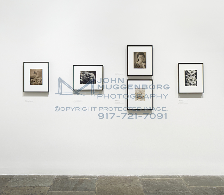"""An installation image from """"Edward Steichen In The 1920's and 1930's: A Recent Acquisition"""" exhibition at the Whitney Museum of American Art."""