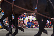 30 JUNE 2012 - PRESCOTT, AZ:   Children watch a horse drawn wagon in the Prescott Frontier Days Rodeo Parade. The parade is marking its 125th year. It is one of the largest 4th of July Parades in Arizona. Prescott, about 100 miles north of Phoenix, was the first territorial capital of Arizona.   PHOTO BY JACK KURTZ