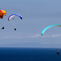 USA, California, San Diego. Torrey Pines paragliders.