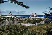 CS01110-10. Cape Arago July 1954
