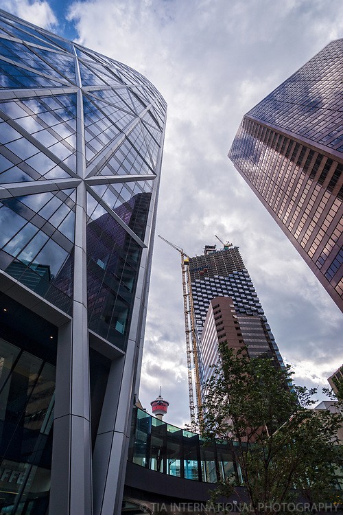 The Bow, Calgary Tower, TELUS Sky, Suncor Energy Centre (left to right)