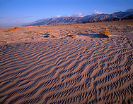 CADDV_020 - Textures in sand dunes at Mesquite Flats are defined by early morning light, Grapevine Mountains rise in the distance, Death Valley National Park, California, USA