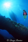 diver swims over coral-encrusted lava arch, Black Sand Arch, Kaupulehu, Kona, Hawaii ( the Big Island), United States ( Central Pacific Ocean ) MR 286