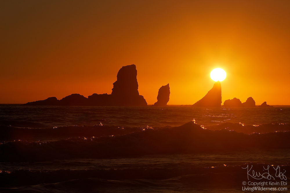 "The setting sun seems to be balanced on one of ""nose"" of one of the Sea Lion Rocks, a series of sea stacks off the northern Oregon coast. The rocks were formed by ancient lava flows, which have since been eroded by constant pounding from Pacific Ocean waves. These sea stacks are located near Ecola State Park, north of Cannon Beach, Oregon."