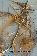 Vandalized trail map and interpretive panel, April, Mima Mounds Natural Area Preserve and National Natural Landmark, Puget Trough Ecoregion, Thurston County, Washington, USA