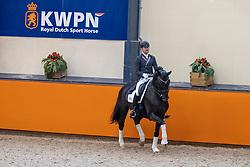 Hanzon Theo, NED, Invershin<br /> Fotodag KWPN Hengstenkeuring 2021<br /> © Hippo Foto - Dirk Caremans<br /> 06/01/2021