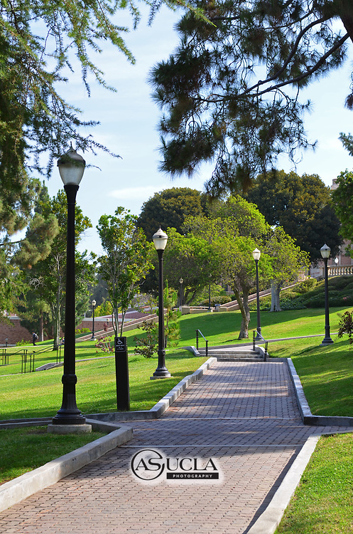 ASUCLA Photography Archive-  Image of the famous Bruin Walk that runs east-west through the center of the UCLA Campus. University of California Los Angeles, Westwood, California.<br /> Copyright: ASUCLA