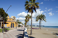 Paseo Maritimo, promenade, palms, palm trees, quiet, low season, Mediterranean, Mediterraneo, Estepona, Malaga, Andalucia, Andalusia, Spain, Espana, Costa del Sol, tourism, travel, holidays, 201302201137.<br />